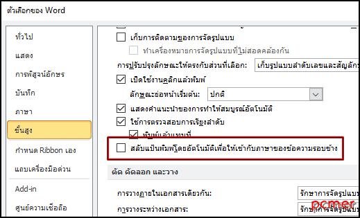 Word_option